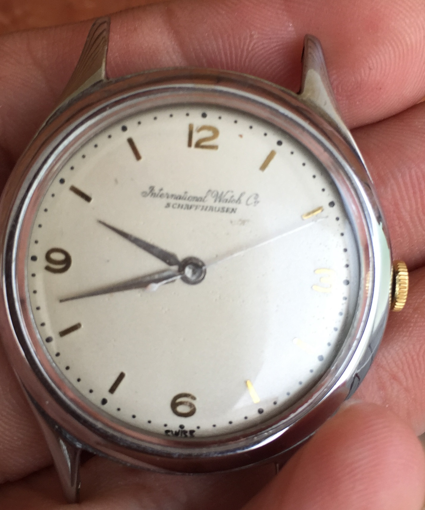 iwc dating serial